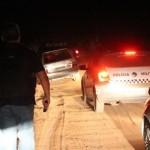 """Operação """"Arca de Noé"""", termina com bandido ferido e animais roubados são recuperados pela policia em Guamaré."""